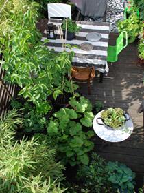 urban garden ostenfeldt 22
